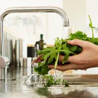 Manejo higiénico de alimentos