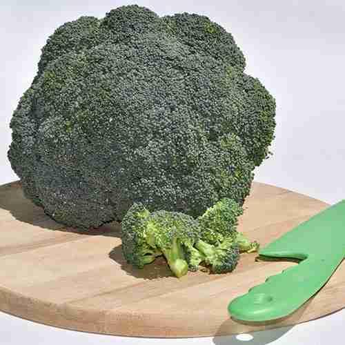 Brócoli fresco | Proveedores de papas para hoteles y restaurantes. Vermontina