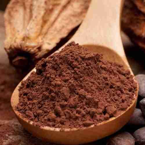 Cocoa Kingdom | Proveedores de cacao en polvo | Hostelería Ecuador
