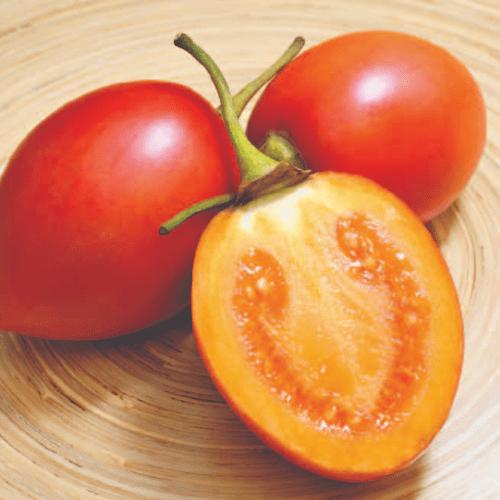 Proveedores de Tomate de Árbol | FLP del Ecuador