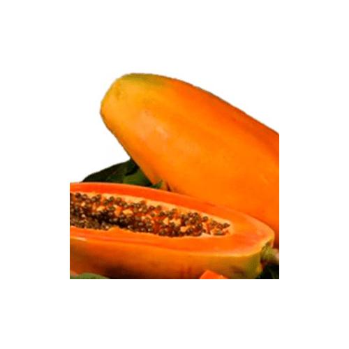 Proveedores de Papaya para hoteles y restaurantes