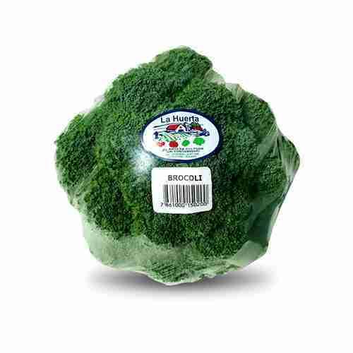 Proveedores de brócoli para hoteles y restaurantes. LA HUERTA