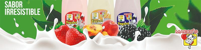 Lácteos Marco's | Proveedores de yogurt y quesos | Proveedores de lácteos para hoteles