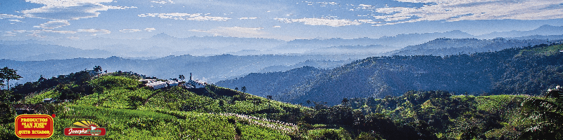 Productos San José | Proveedores de panela orgánica | hostelería ecuador